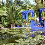 Morocco Marrakech Jardin Majorelle