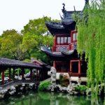 Shanghai Tree-water-nature-flower-pond